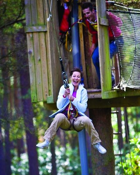 Swing-from-the-trees-at-Go-Ape-2fa9d92a