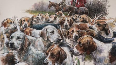 'The hounds at the hunt are in constant motion and I want to capture that authenticity'