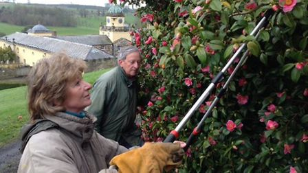 The Earl and Countess are hands on gardeners