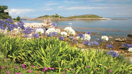 The abundance of nature on the Isles of Scilly is just one of the many reasons visitors are drawn ba