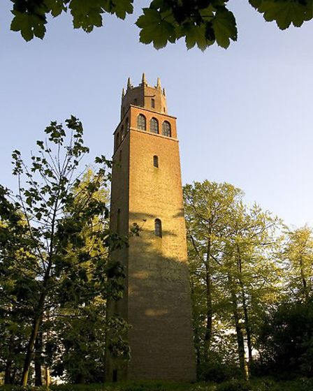 Folly Tower and surrounding woodland in Faringdon | Photo credit: Neil Hanson