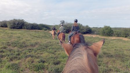 My horse Girly, lagging behind the group as we make our way across the fields in Addo | Photo credi