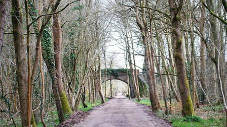 Meon-Valley-Trail
