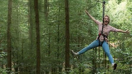 GoApe in the Forest of Dean
