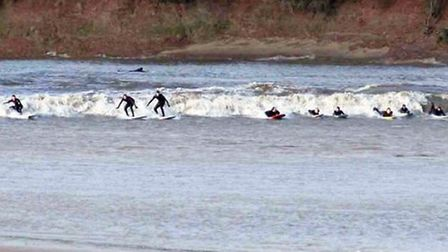Surfing the Severn Bore / Photo: Audrey Hudson