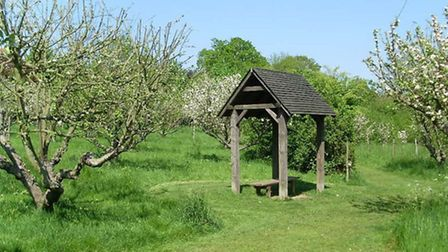 The orchard has more than 150 varieties of apple