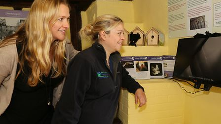 Wendy Jones (Nantclywd team leader) and Lizzy Webster (Biodiversity officer) check the main roost on