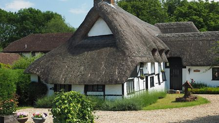 One of several picturesque thatched cottages in Dogmersfield © Steve Davison