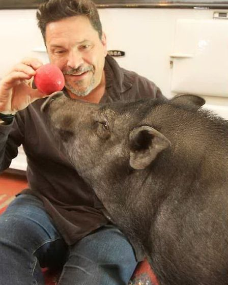 Wilbur doesn't drink as such but he enjoys eating old pears and apples - which are essentially ferme