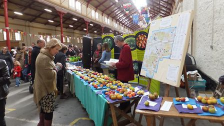 Nic van Grunsven, Orchards Live committee member, is behind the stall assisting with apple identific