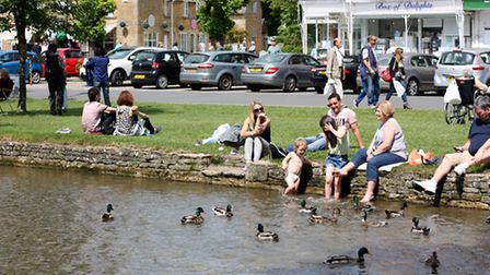 Babies and adults alike delight the ducks