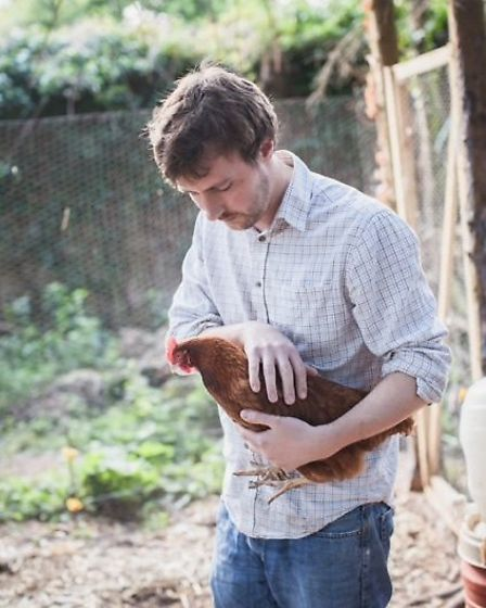 Alongside the pigs are the pub's chickens which provide fresh eggs for the pub every day