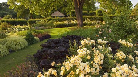 The Bowes-Lyon Rose Garden in summer is another highlight (Photo RHS - Lee Beel)