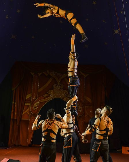 Acts performing in the Gandeys Circus big top