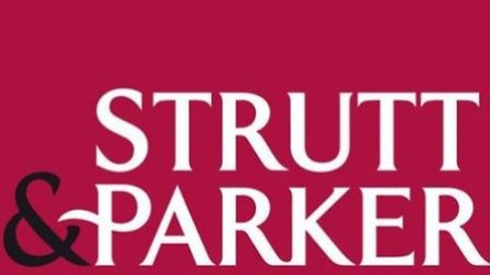 Strutt and Parker   Working from home – is it really the easy option?