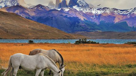 The BHS's fundraising Challenge Rides can take you to some of the world's most stunning landscapes