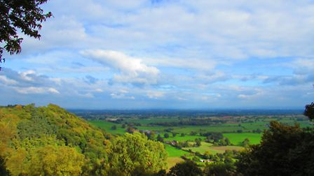 The view from Bulkeley Hill Wood