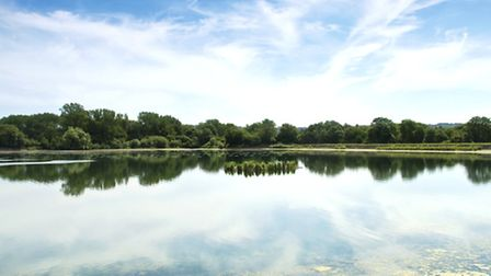 Spring is the perfect time to pay Tring Reservoirs a visit