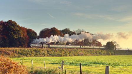 There's a timetable of steam trains, dining trains and special events at the Watercress Line - runni