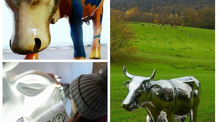 The-CowParade-herd-is-ready-to-29611250