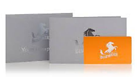 Bluewater gift card