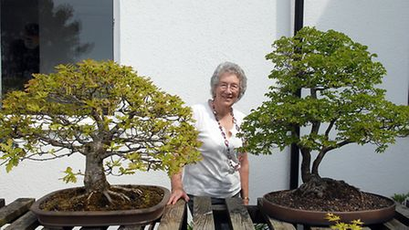 Liz Scott with an English Oak and English Elm. The English Elm has been lost from our landscape due