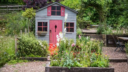 Staverton Bridge Nursery is a haven of colour and beauty