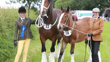 Sue Burras and grand daughter Stacey Eyres of Hambleton, Fylde, with Shire Mare and Foal ' Cumargh H