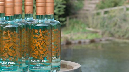 Silent Pool seems to be taking over the gin world (Photo: Philip Traill)