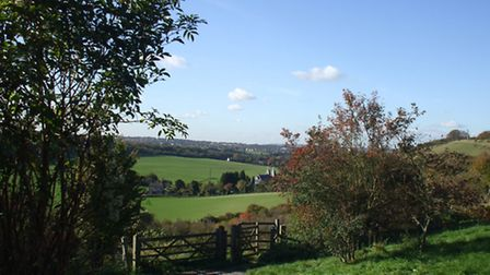 A typical view of the North Downs
