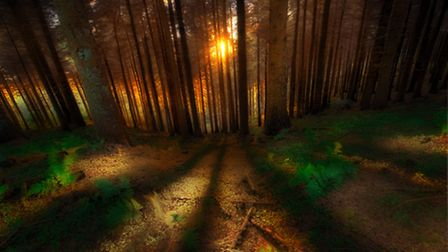 3rd place - Macclesfield Forest by Chris Heapy