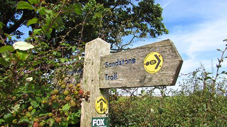 Part of this walk follows the Sandstone Trail