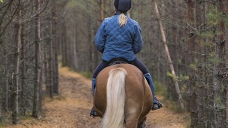 Woman horseback riding in forest path (credit: Sitikka/Getty Images/iStockphoto)
