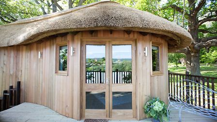 The luxury tree house at Deer Park, Honiton