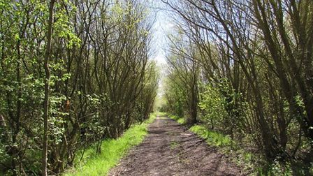 Track through what was once RAF West Kirby