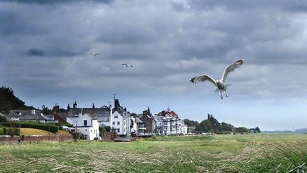 Windy day at Parkgate by Michael Harrison
