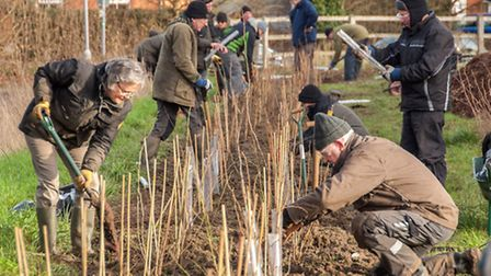 CMS volunteers creating a native hedgerow at Cadwell Lane Playing Field