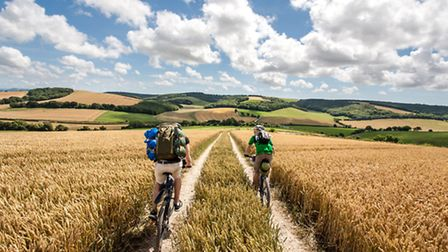 There's no better way to explore the South Downs than on a bike