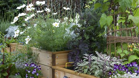 A mix of flowers, herbs and veg in small raised beds is a great space-saving idea