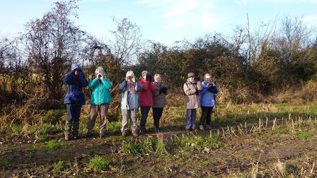 Ladies Birdwatching in Farndon. Picture by Anne Brenchley
