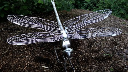 Dragonfly by Lucy Quinnell