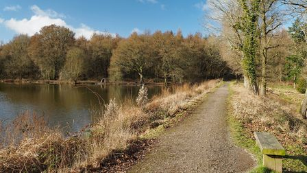 Picturesque Lodge Pond viewed from the dam © Steve Davison