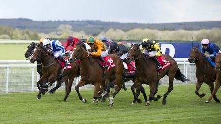 Festival of Food and Racing, Goodwood Racecourse (Photo by Harry Elliot)
