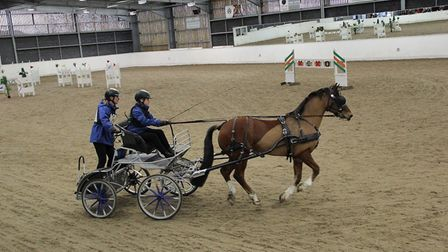 Oliver Bennett carriage driving