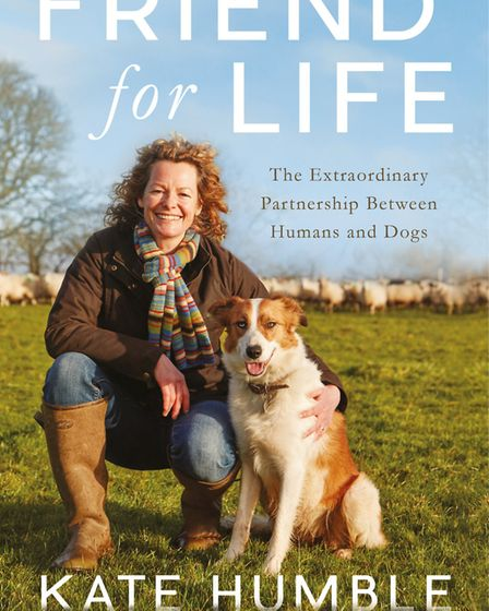 Friend for Life - 'As a species, I don''t think we can live without dogs now'