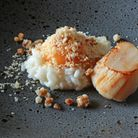 Scallop, Parmesan Risotto, confit hen's egg yolk, dehydrated egg *** Local Caption *** Machine Hous