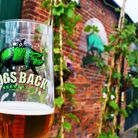 An end of tour tasting at Hogs Back Brewery in Tongham (Photo: Matthew Williams)
