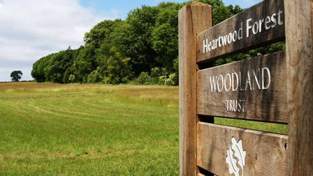 Open grassland and woodland - just two of the important habitats at Heartwood Forest (photo: Woodlan