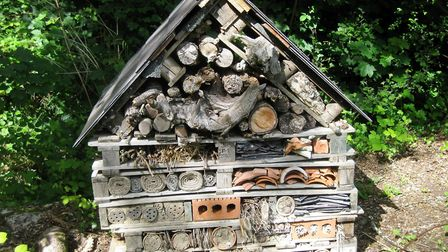 A bug hotel can support a huge range of species which in turn provide food for others (photo: Rob Ho