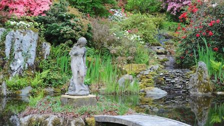 A section of garden at Aber Artro Hall